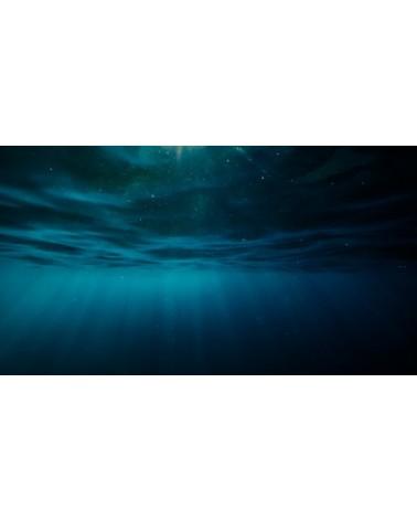 Journey Fingering : Neptune Grincheux bain 002