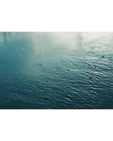 Journey Lace : Giboulées de Mars bain 001